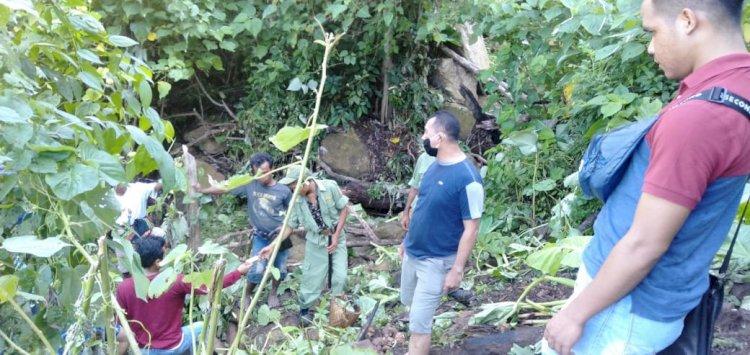 Lempar Batu Hingga Sebabkan Korban Pati Tunu Tewas, MT Berhasil Diamankan oleh Pihak Kepolisian Polres Sumba Barat