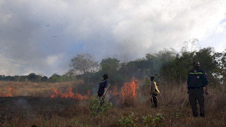 Personel Polsek Umbu Ratunggay Padamkan Api Karhutla Di Kawasan Taman Nasional