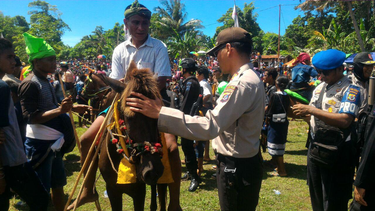 Pengamanan Ekstra Pesta Adat Pasola II Oleh Bapak Kapolres Sumba Barat AKBP MUHAMAD ERWIN