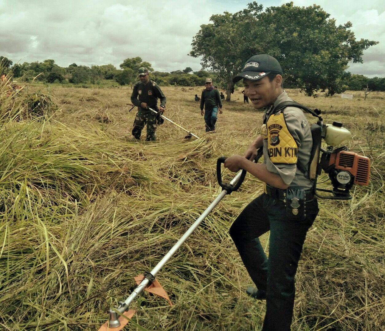 Sinergitas TNI, Polri dan Masyarakat dalam Membangun Sektor Pertanian