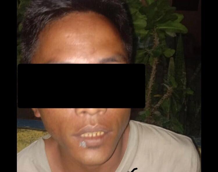 MSD, DPO Pelaku Pencurian Kuda Berhasil Ditangkap Tim Polsek Loura