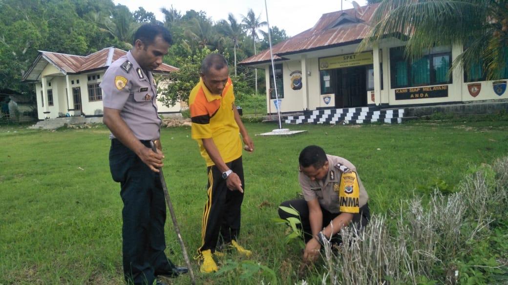 Polri Peduli Penghijauan | 'Penanaman Serentak', Polsek Lamboya Tanam Pohon di Lingkungan Mako